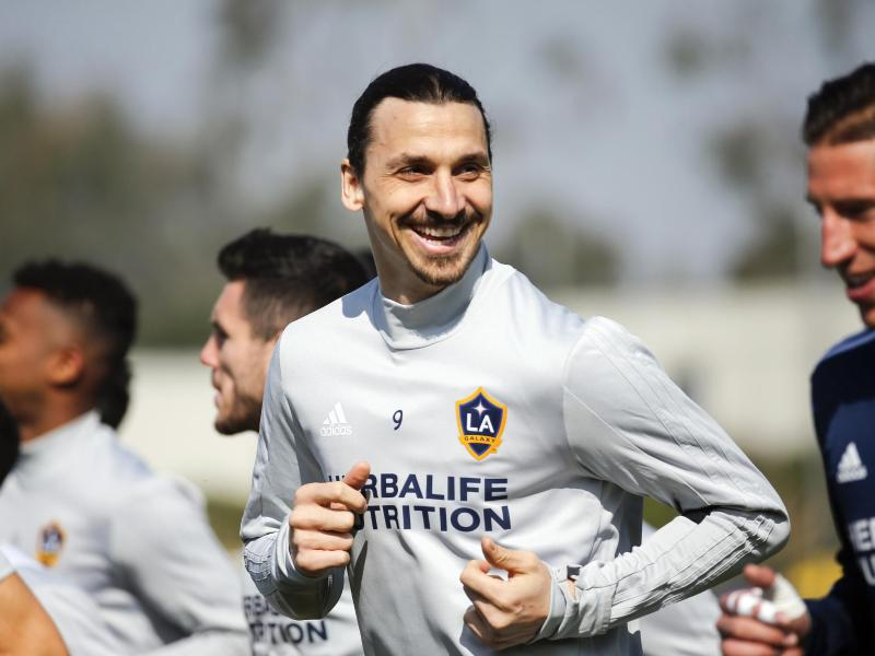 Bild zu Zlatan Ibrahimović