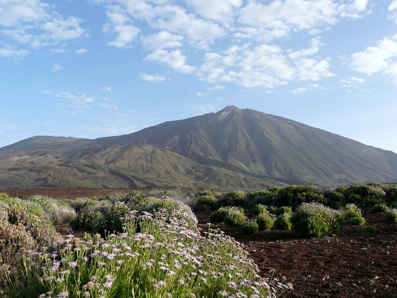 Bild zu Vulkan Teide