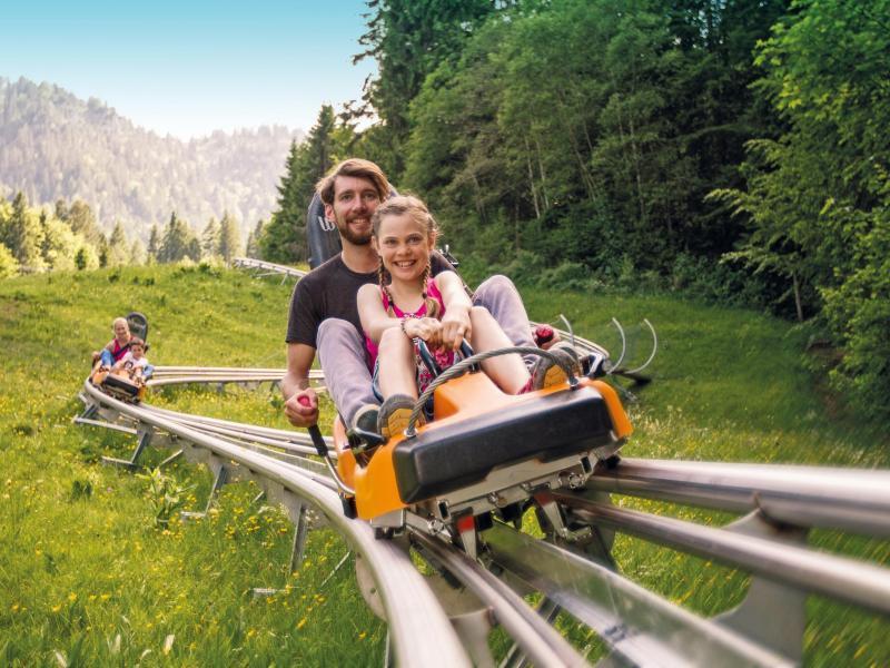 Bild zu Alpine Coaster in Oberammergau