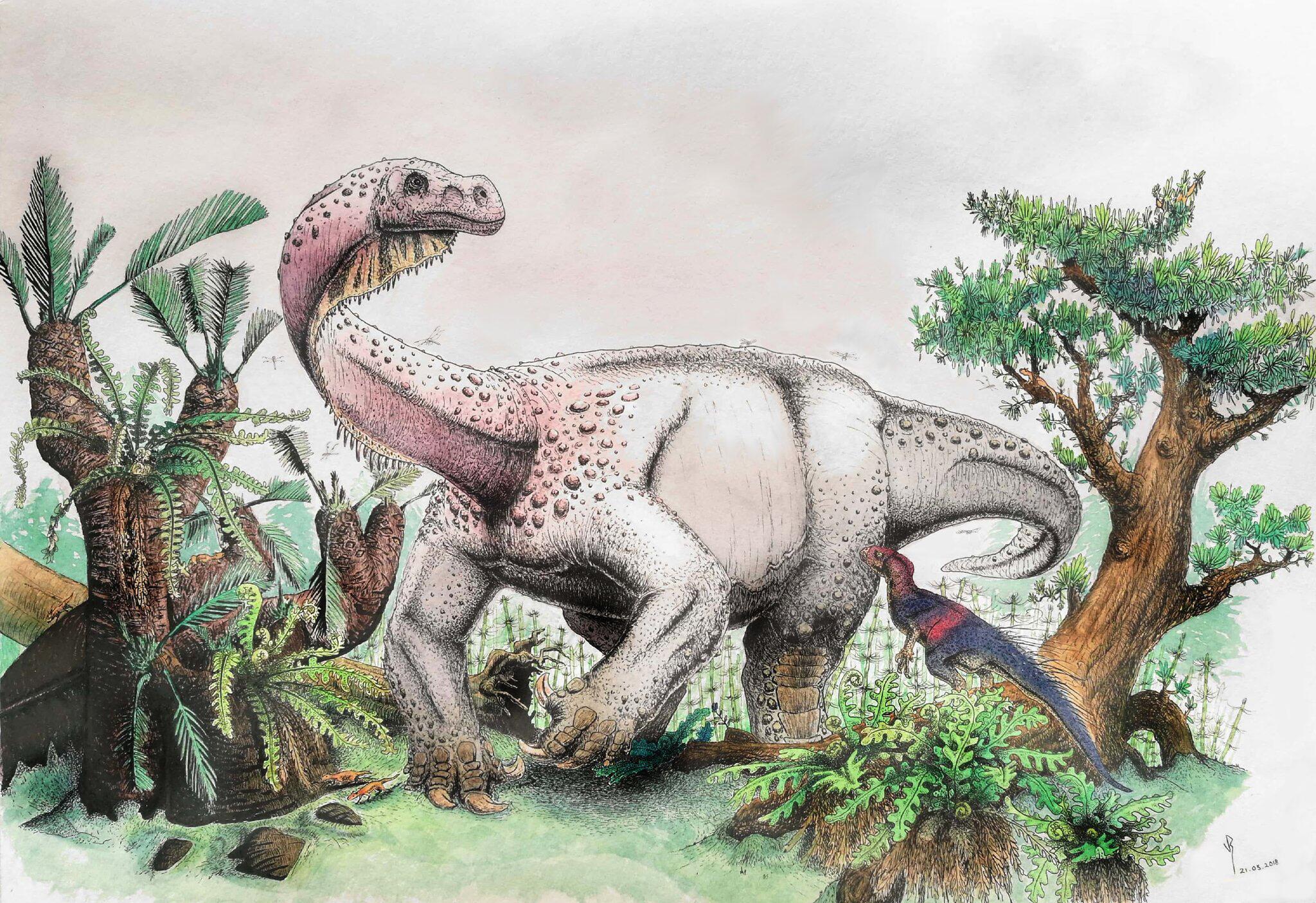 Bild zu Dinosaurier «Ledumahadi mafube»