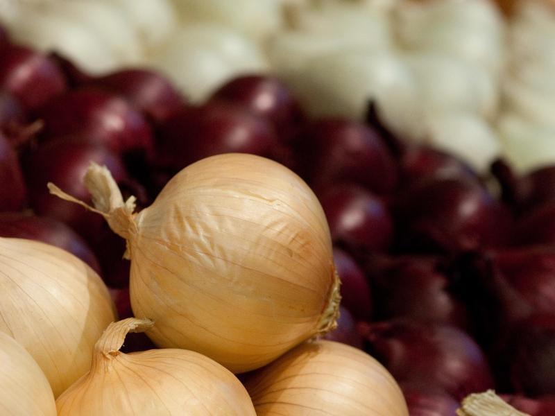 Bild zu Zwiebeln