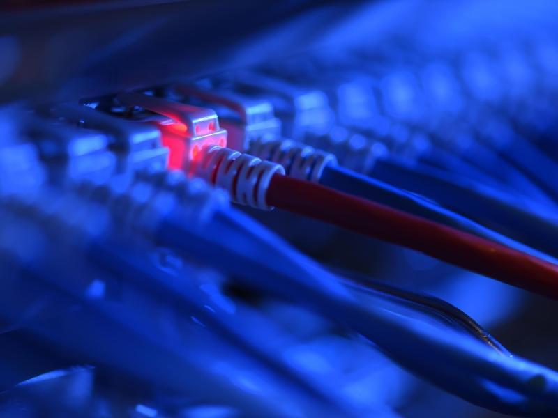 Bild zu Netzwerk-Kabelstecker