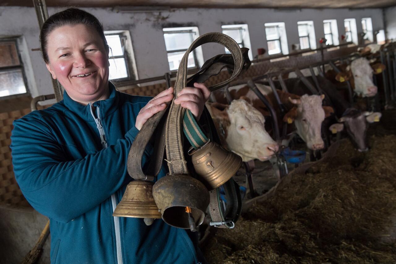 Bild zu Rechtsstreit um störende Kuhglocken