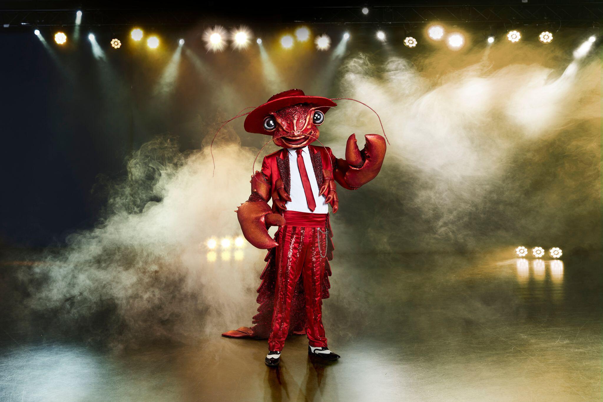 Bild zu The Masked Singer