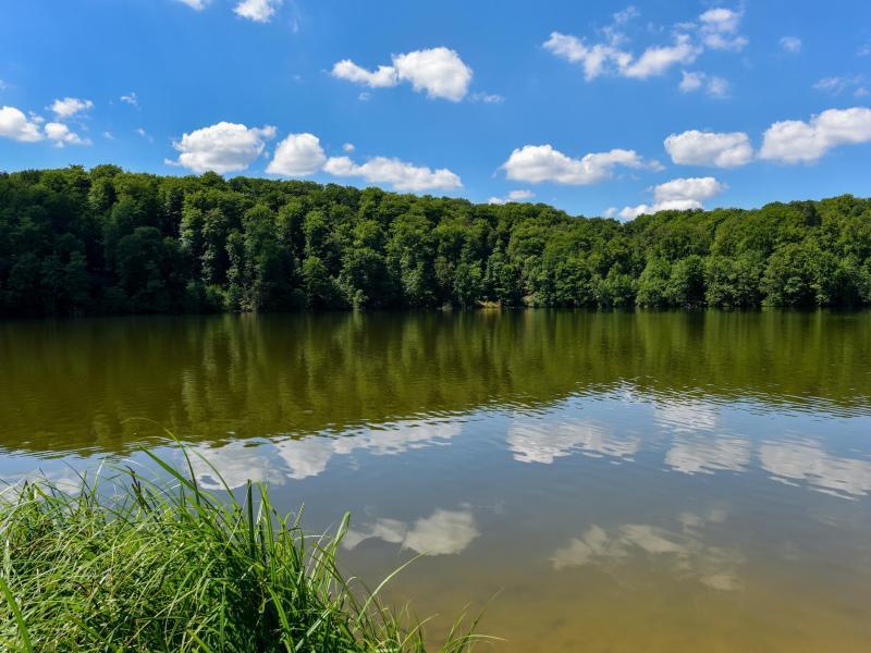 Bild zu Naturpark Schlaubetal