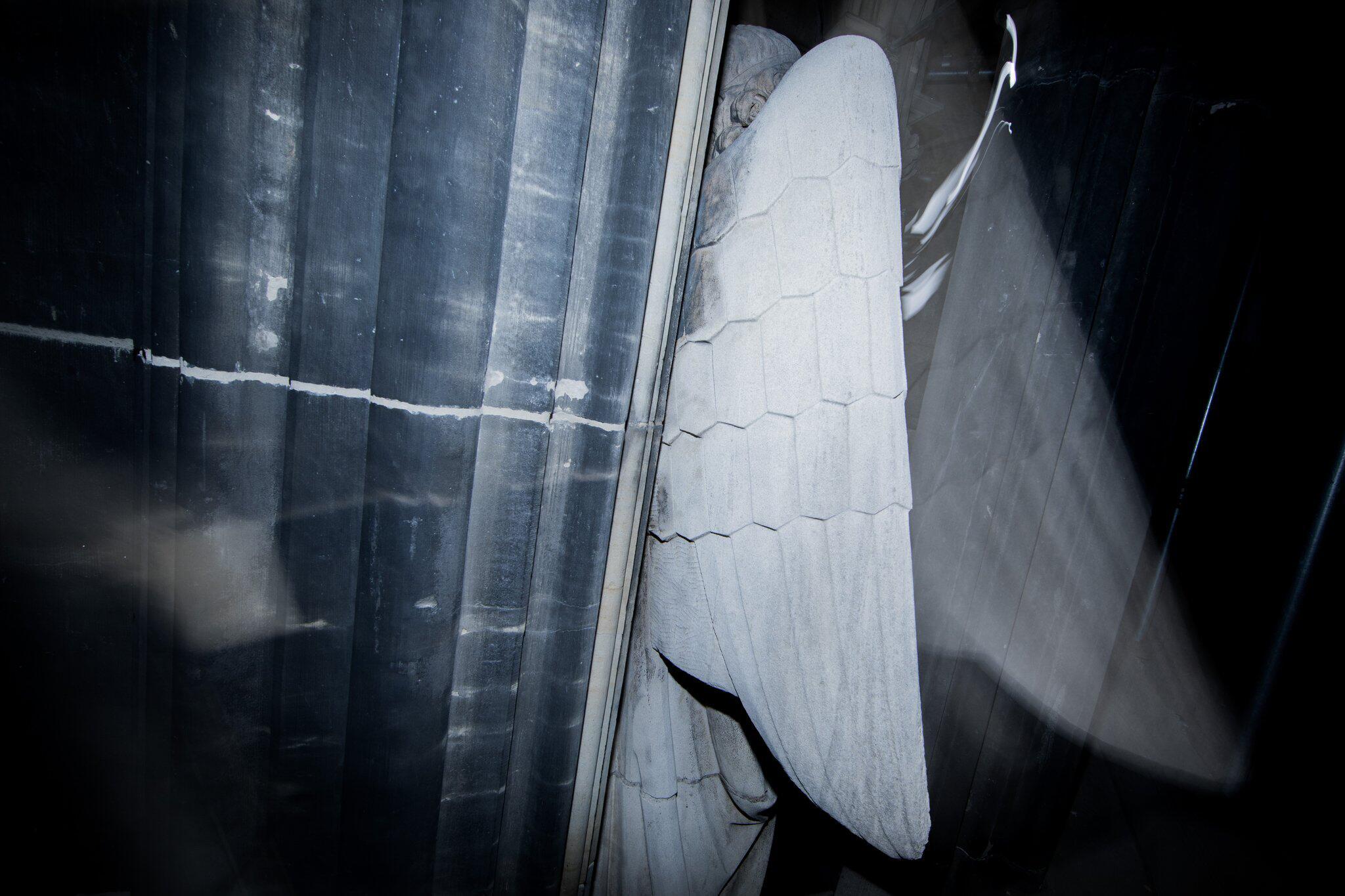 Bild zu Engel am Kölner Dom