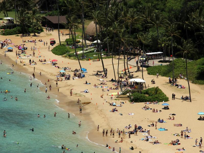 Bild zu Hawaiianische Insel