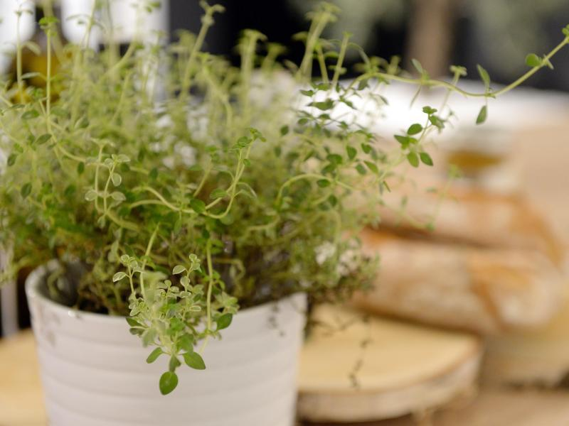 Bild zu Kräuter umpflanzen