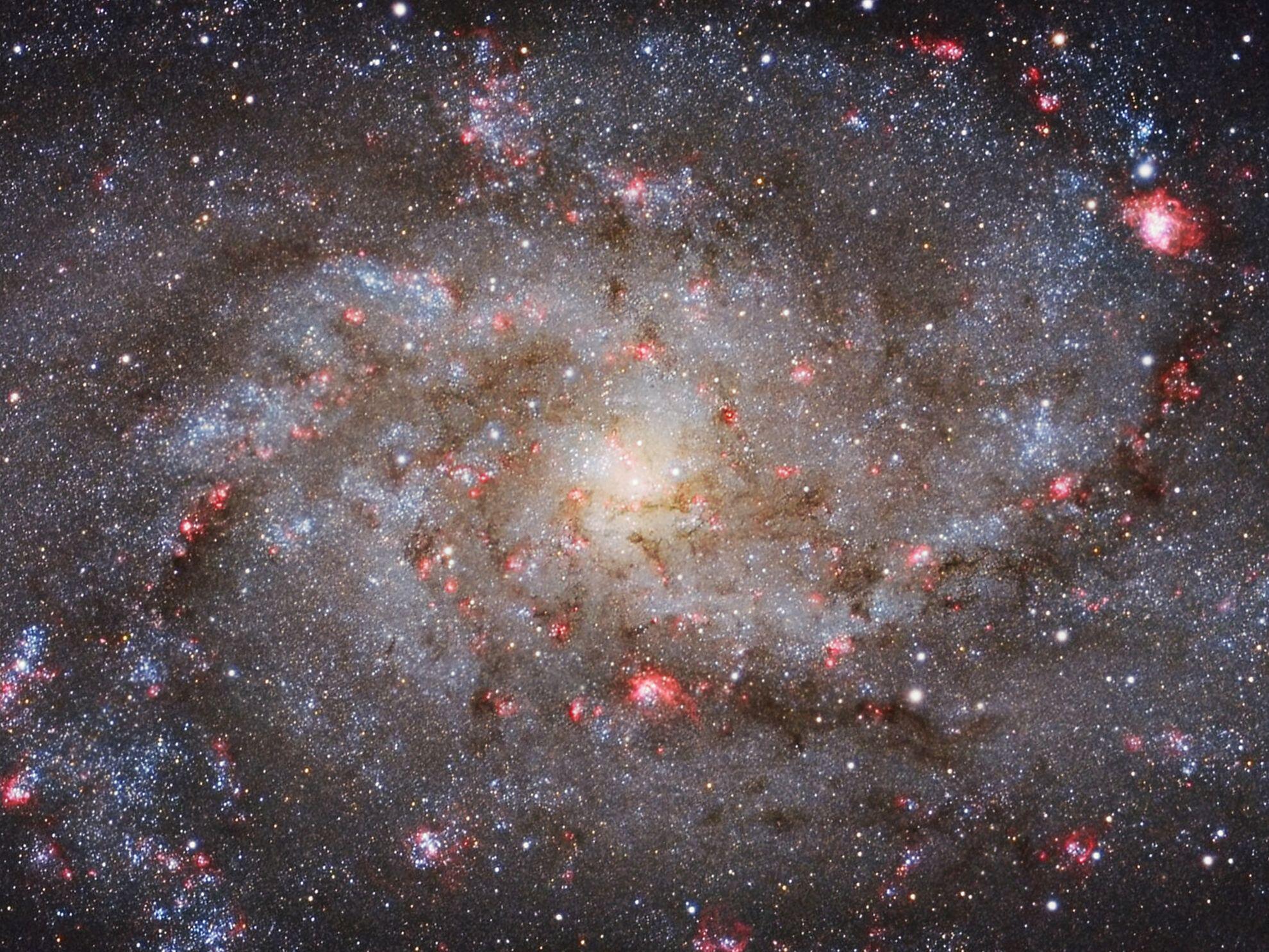 Bild zu Michael van Doorn (Netherlands) with M33 Core
