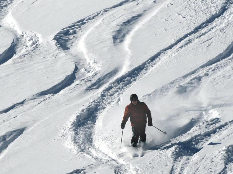 Bild zu Skifahren im Tiefschnee