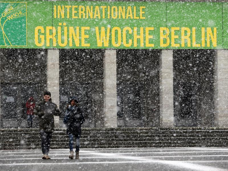 Bild zu Die Grüne Woche Berlin