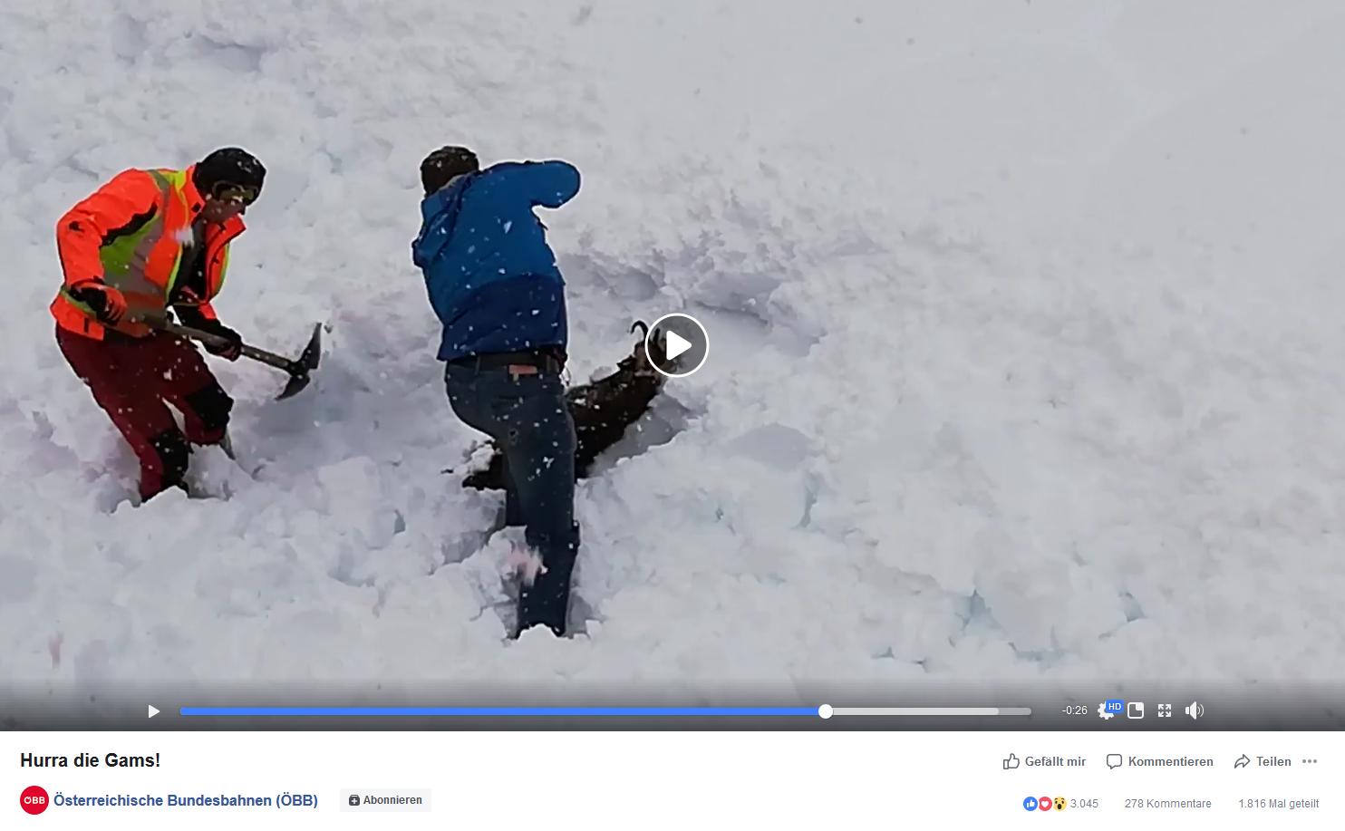 Bild zu ÖBB, Gams, Schnee, Rettung