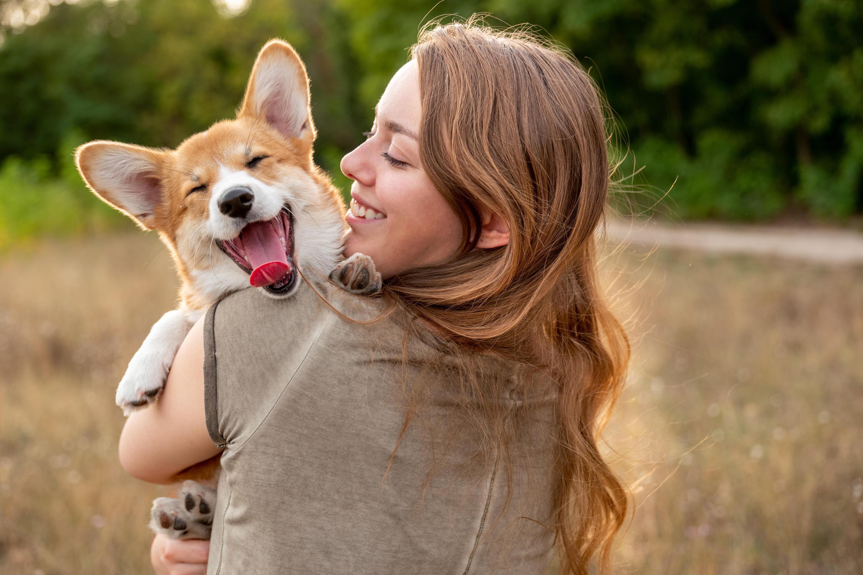 Bild zu Hund, Hunde, Knochen, Beschäftigung, Haustier, Zubehör, Hundebett, Spielzeug
