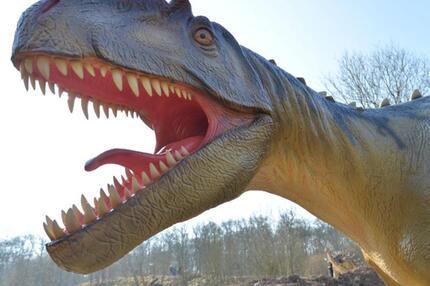 Ein Allosaurus