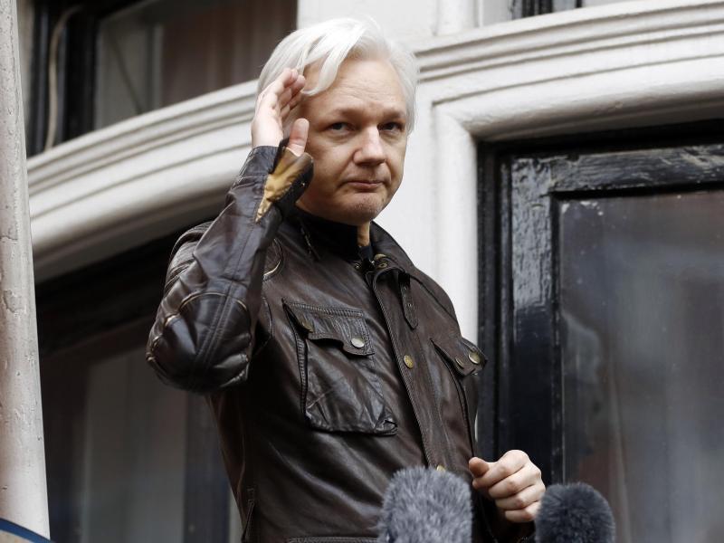 Bild zu Assange