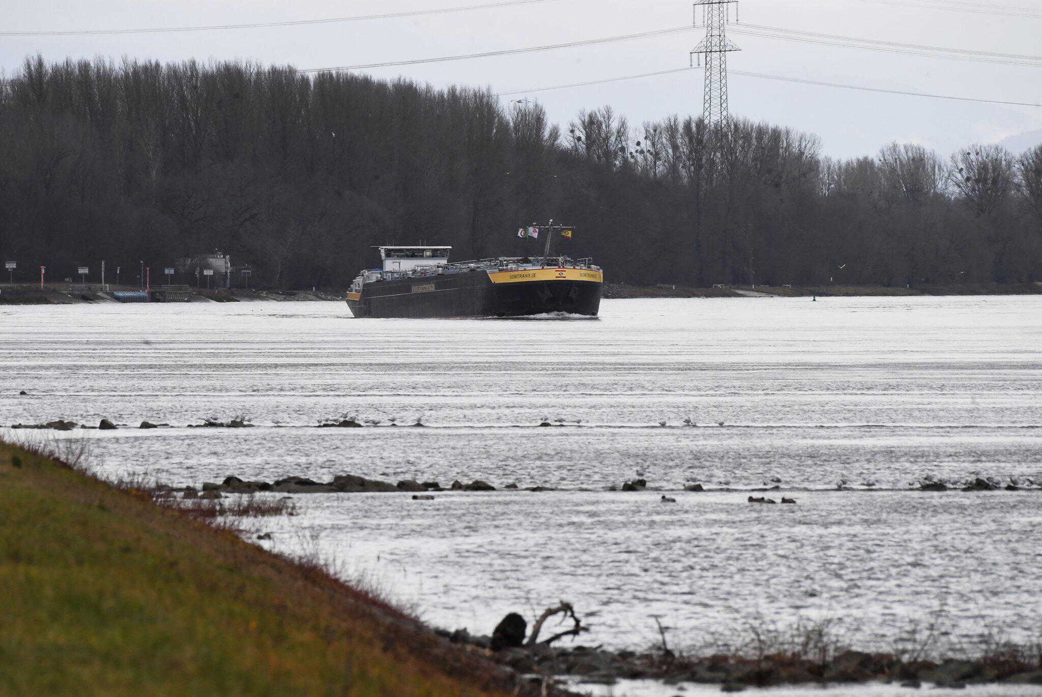 Bild zu Wasserstand am Rhein bei Karlsruhe