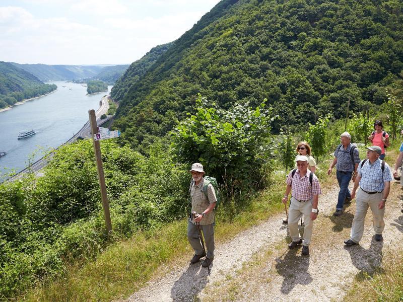 Bild zu Wandern in Rheinland-Pfalz
