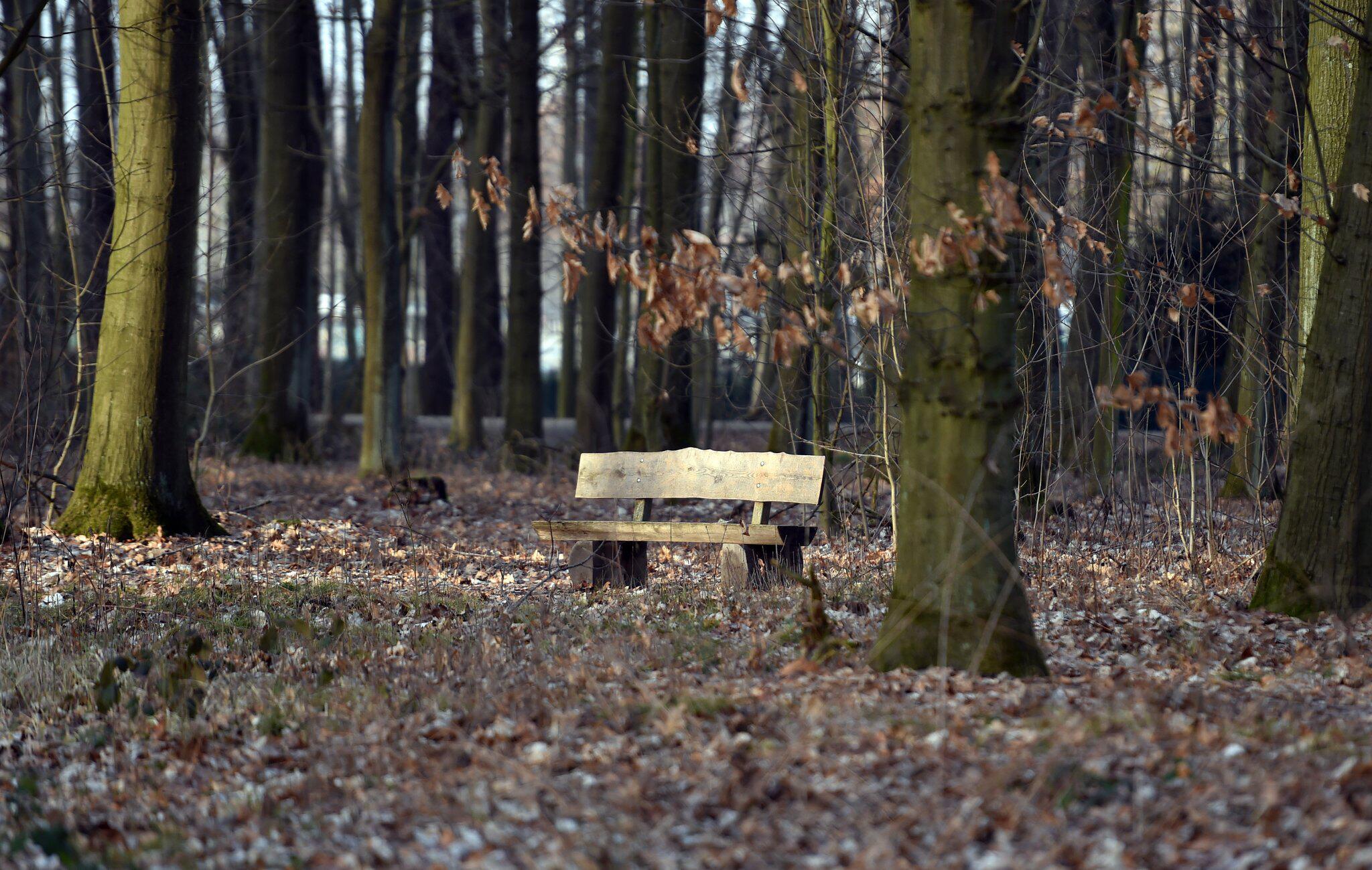 Bild zu Rudi Assauer beigesetzt
