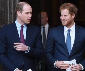 Prinz William, Prinz Harry, Royals, Streit
