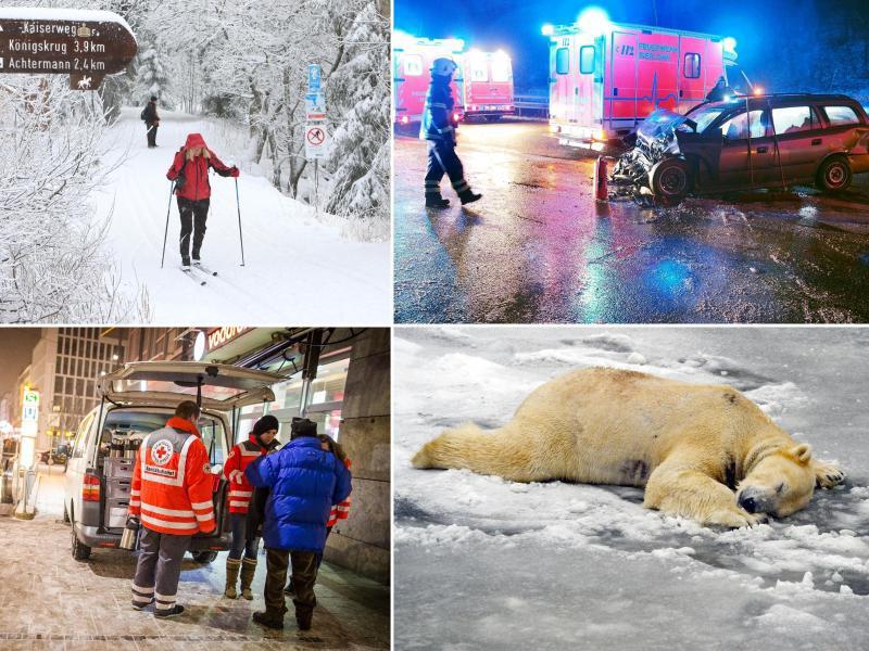 Bild zu Gesichter des Winters