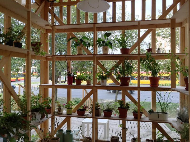 Bild zu Pflanzenhotel in Warschau