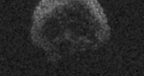 """""""Totenkopf-Asteroid"""""""