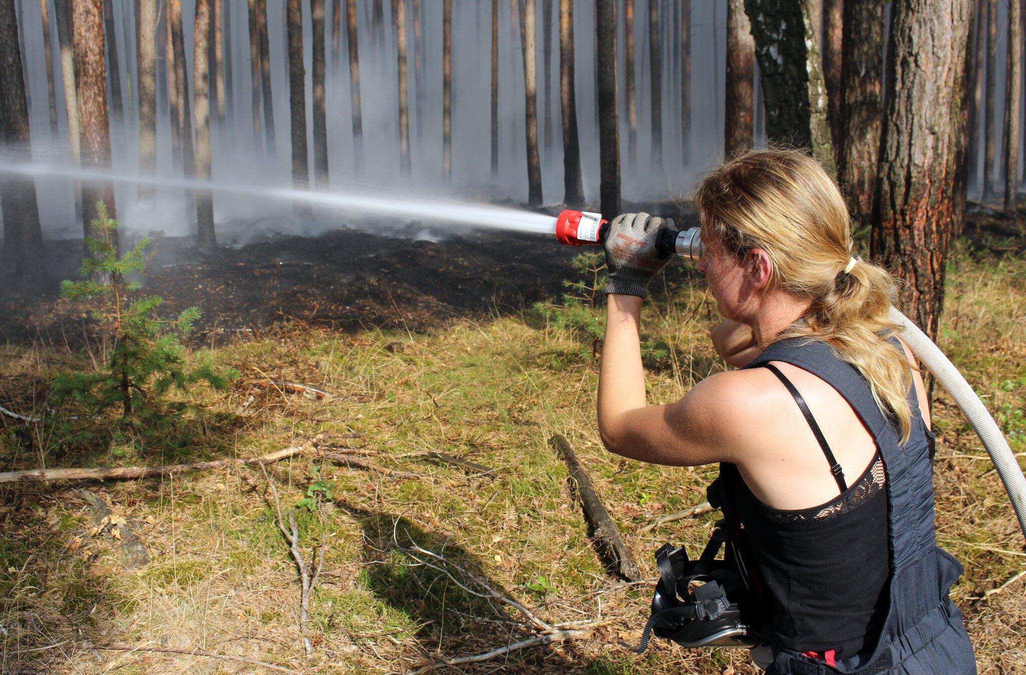 Bild zu Major forest fire near Potsdam