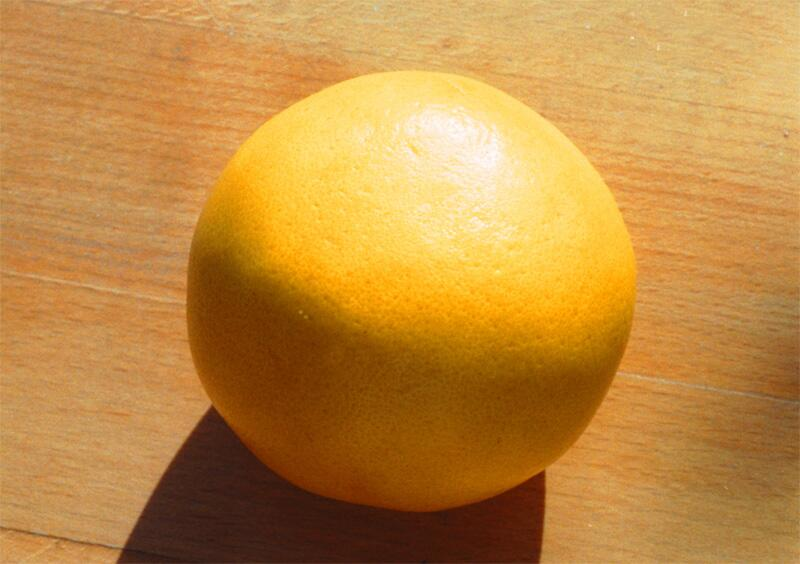 Bild zu Grapefruit
