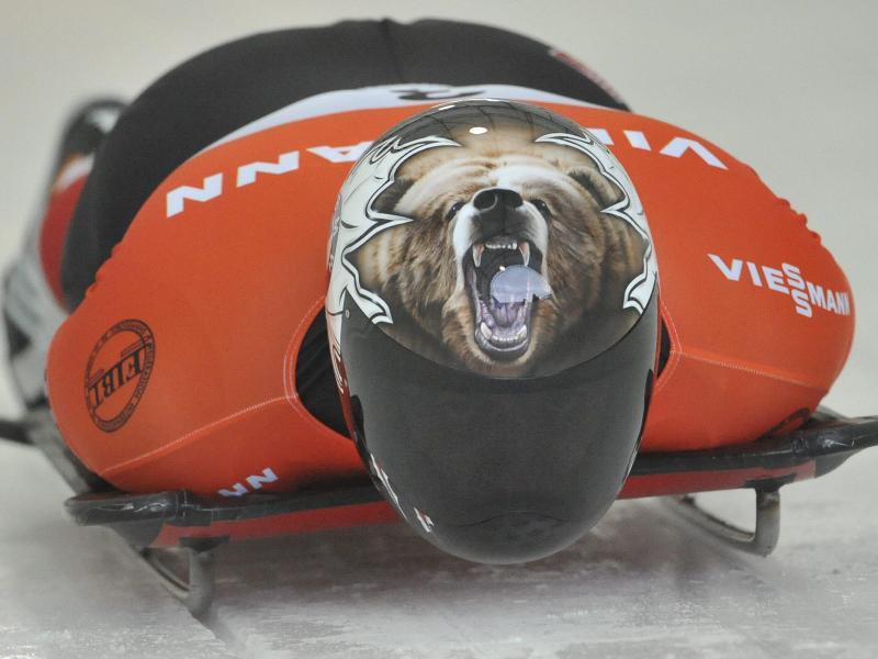Bild zu Brüllender Bär