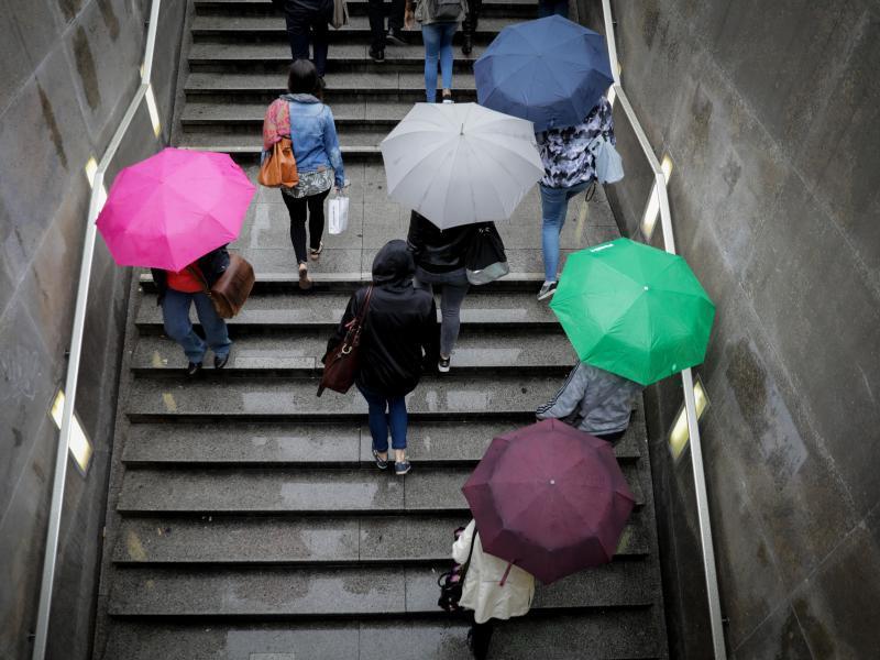 Bild zu Dauerregen