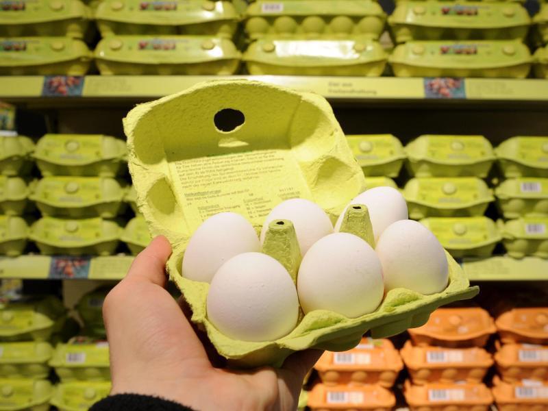 Bild zu Keine Eier aus Freilandhaltung