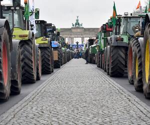 Internationale Grüne Woche - Demonstration für Agrarwende