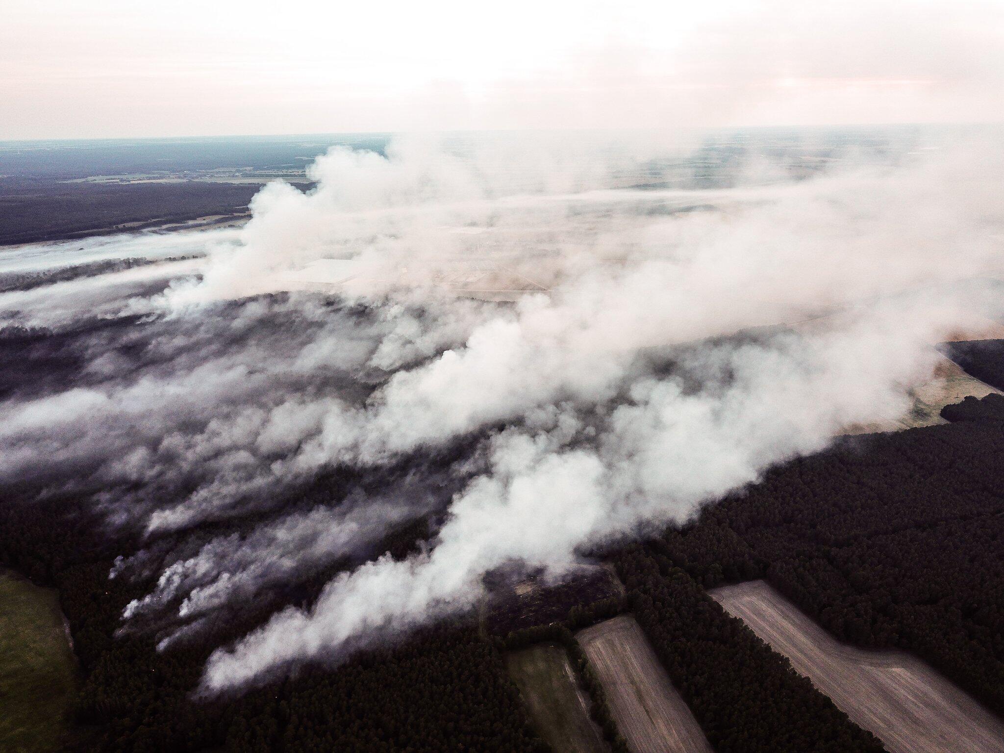 Bild zu Waldbrand, Jüterbog, Brandenburg