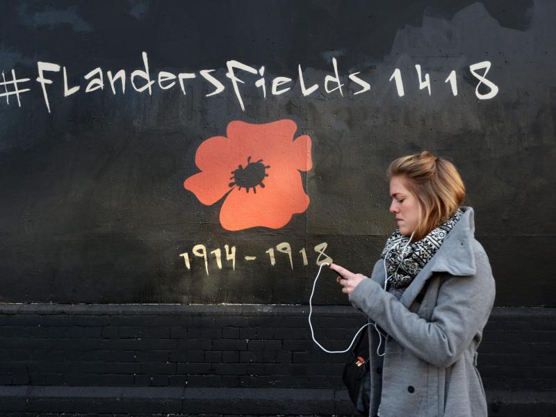 Bild zu Eine Blume für Flandern