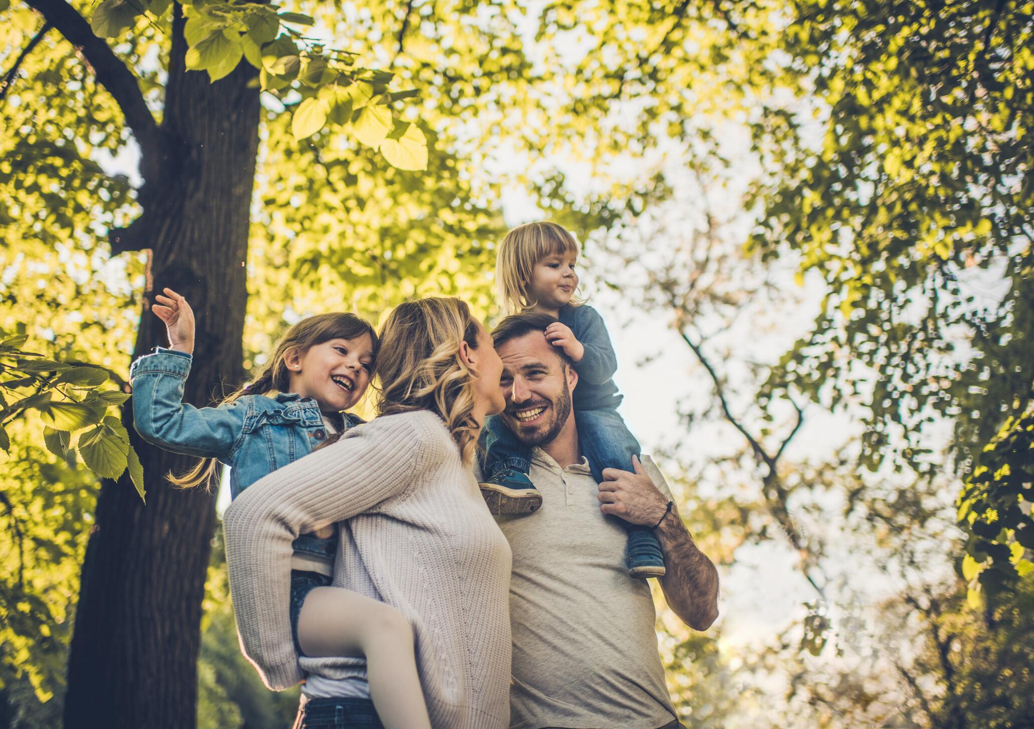Bild zu Eltern mit ihren zwei Kindern sind im Wald