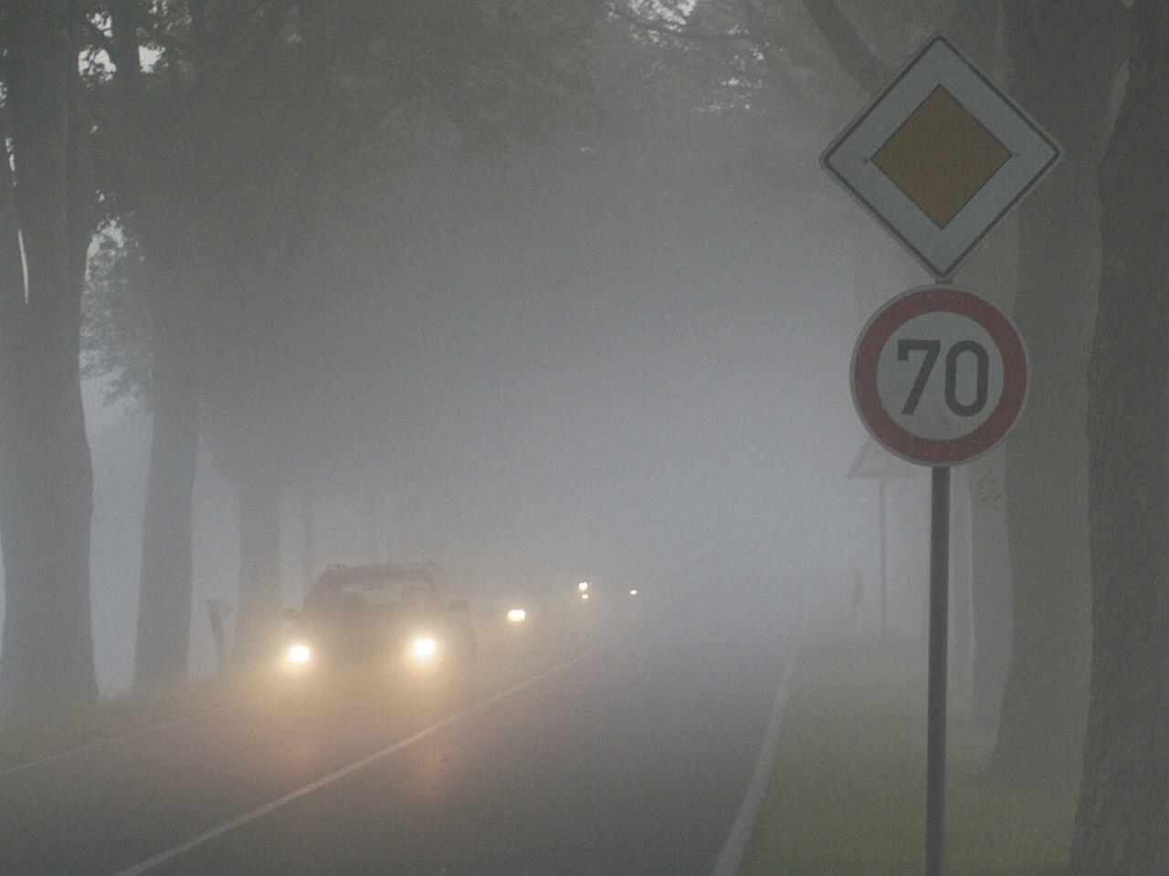Bild zu Autofahren im Herbst - So reagieren Sie richtig auf Nässe, Nebel und Wildwechsel