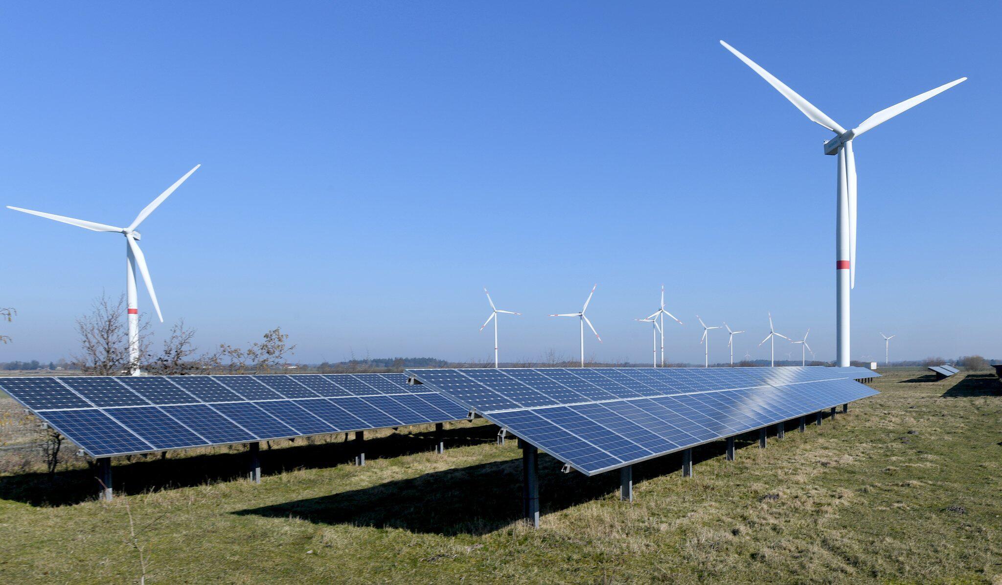 Bild zu Ökostrom-Anteil erstmals über 50 Prozent