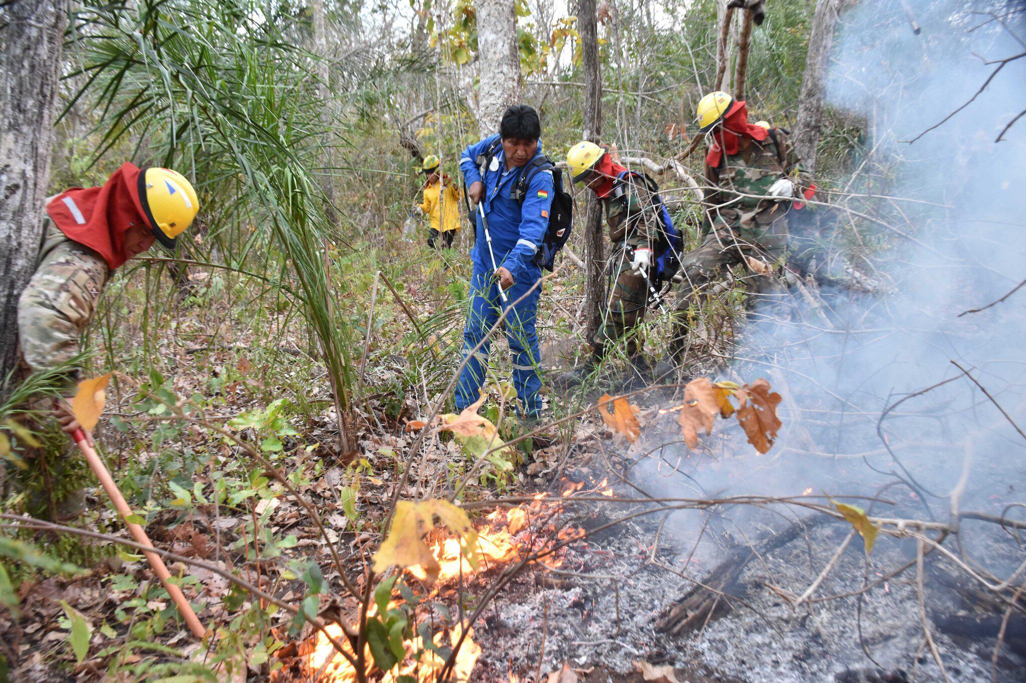 Bild zu Waldbrände in Bolivien - Evo Morales