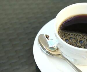 Kein Witz! So wohltuend ist Kaffee für deinen Körper