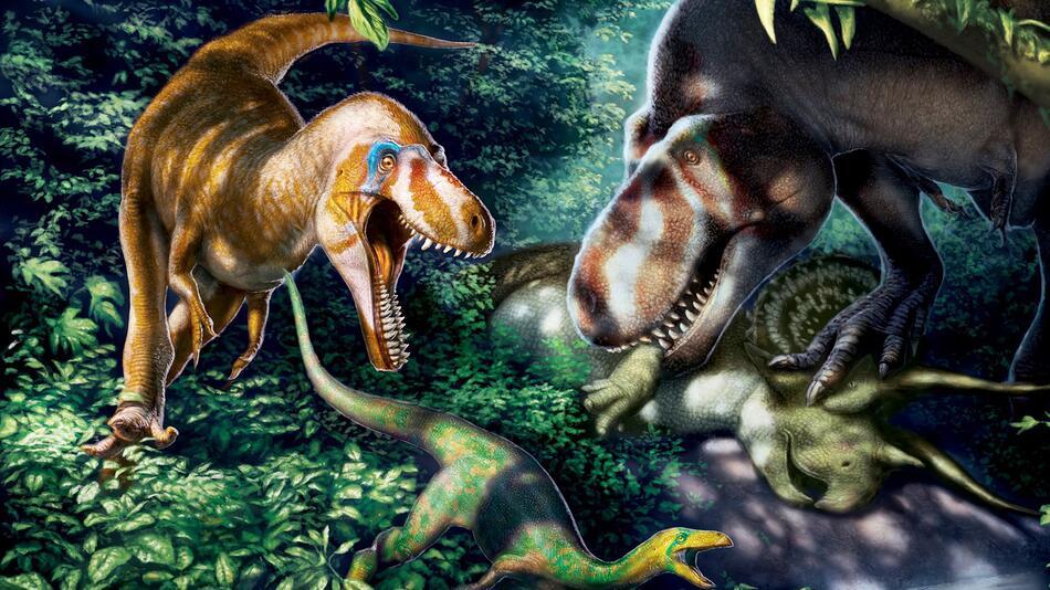 Illustration: Junge Tyrannosaurus rex